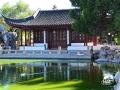 Chinese Garden of Serenity