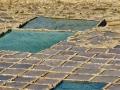 Panwie solne przy Xwejni Bay