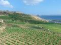 Ix-Xatt l-Aħmar
