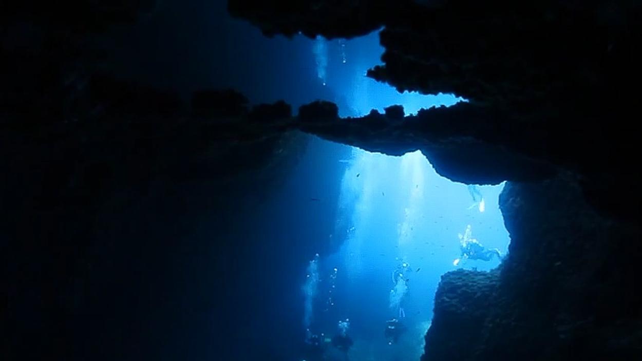 nurkowanie głębokie malta