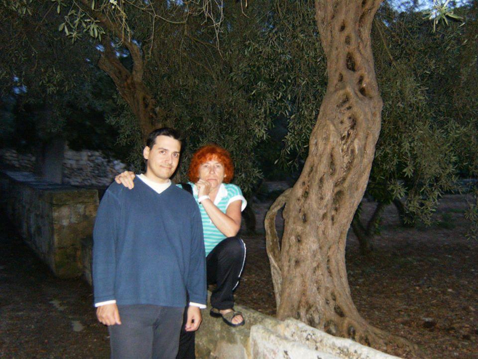 drzewa oliwne malta